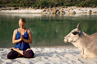 Wellness experience in Rishikesh