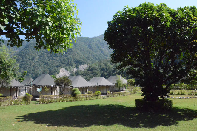 Luxury tents at the Aspen Camps in Ghattughat, Rishikesh