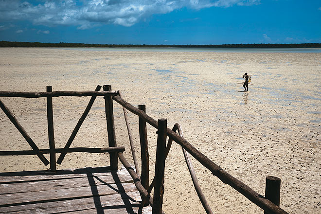 A fisherman baits his catch on the mudflats in Mida Creek which are rich in biodiversity