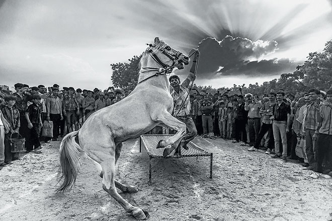 A horse fair at Tarnetar village in Gujarat