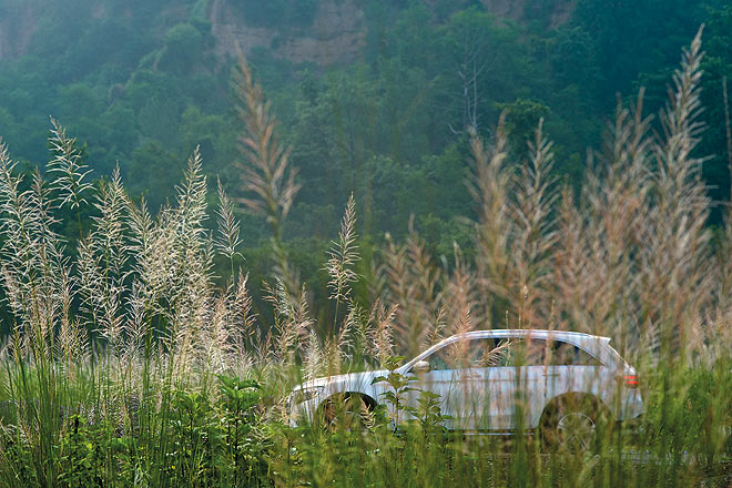 The engine of the Mercedes-Benz is so quiet it glides through the forest unnoticed by its inhabitants