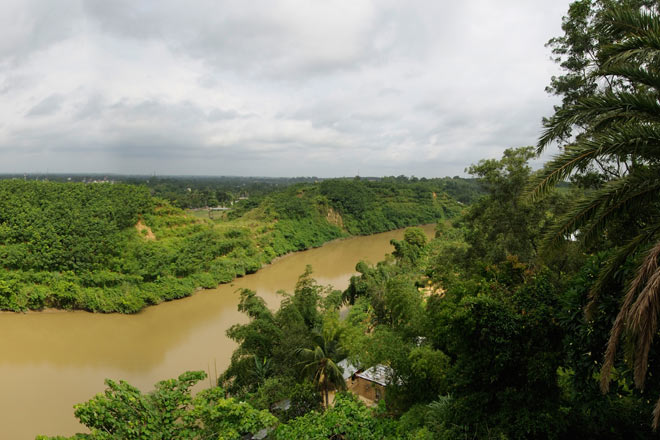 A panorama of the lush forests beside the Gomati river, near Udaipur
