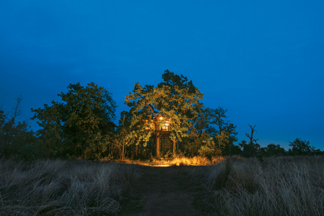 The rooms at Pench Tree Lodge are evenly spread out to ensure privacy