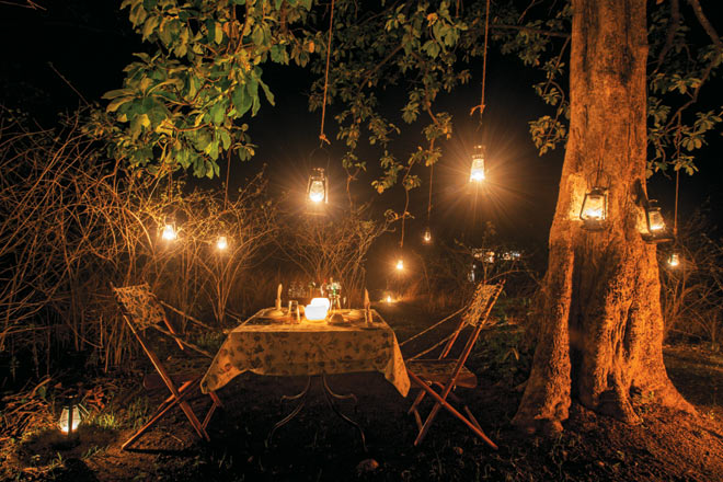 Stylish dinners at Pench Tree lodge