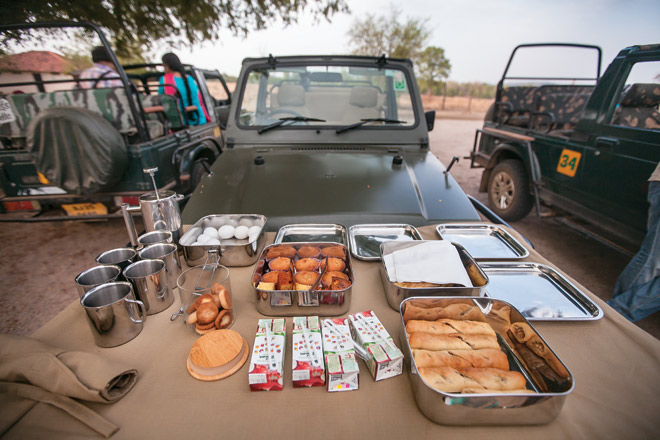 Lavish breakfast preparations amidst a satisfying safari