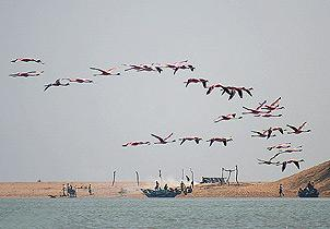 Have you seen Asia's largest brackish water lake?